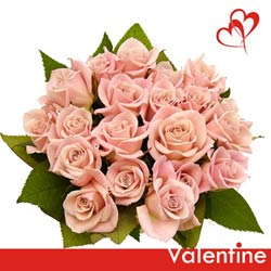 send online bunch of baby pink roses to belgaum